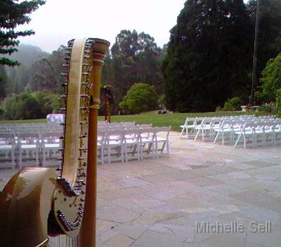 Area Wedding Venues on San Francisco Bay Area Harpist Michelle Sell    Brazilian Room